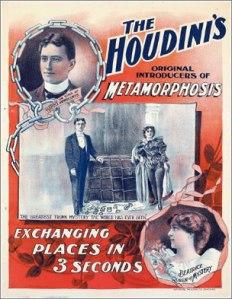 houdini-metamorphosis