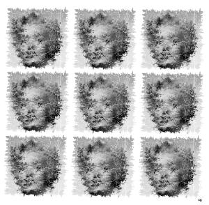 Marilyn 3x3