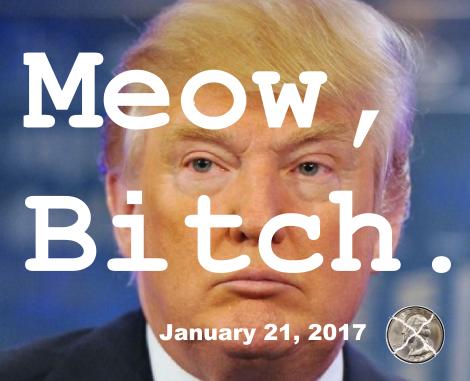 meow-bitch