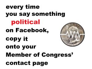 political-facebook