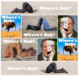 wheres-bob-ostrich